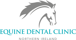 Equine Dental Clinic Northern Ireland :: Home